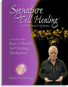 SCH 5B Med Guide 233x300 - Breathing for Ascension Online Class
